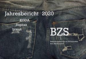 Jahresbericht BZS 2020